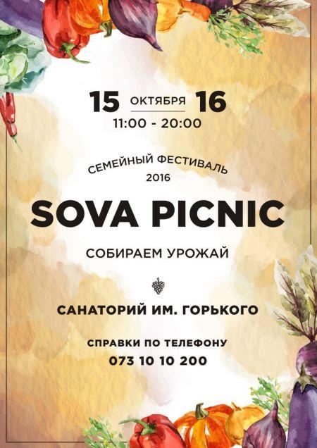 Фестиваль SovaPicnic 2016
