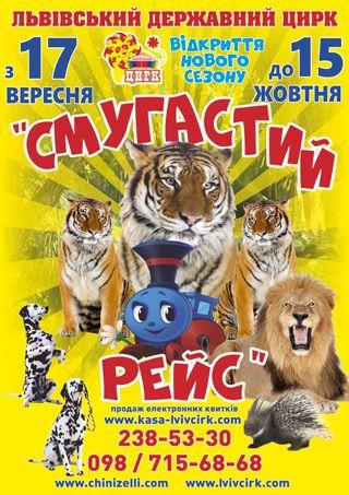 СМУГАСТИЙ РЕЙС. Львівський цирк