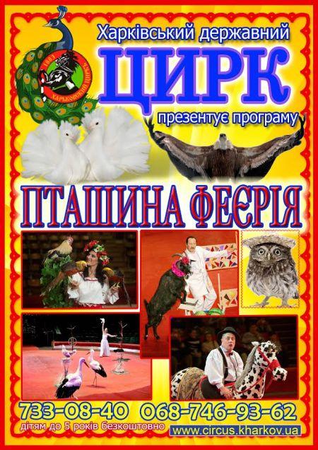 Пташина феєрія. Харьковский цирк