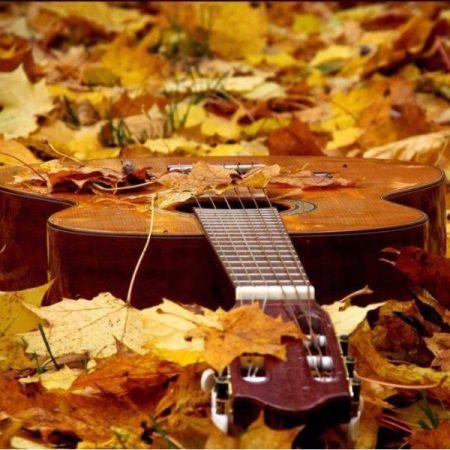 Фестиваль Осенний Водопад