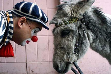 Международный праздник юмора «XIII Смешной фестиваль» 2016