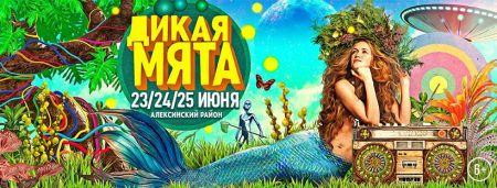 Фестиваль «Дикая мята 2017»