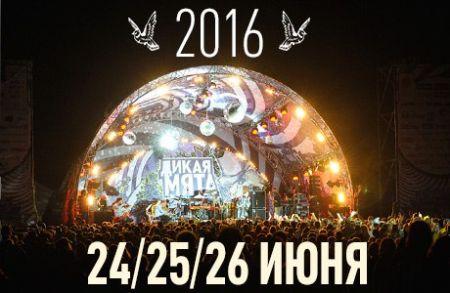 Фестиваль «Дикая Мята» 2016