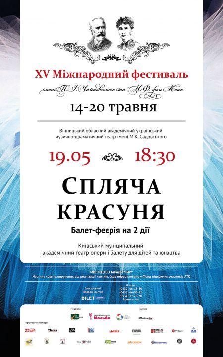 Фестиваль ім. П.І. Чайковського та Н.Ф. фон Мекк 2017