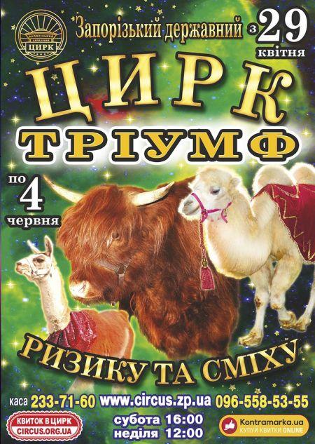 Цирк Тріумф. Запорожский цирк